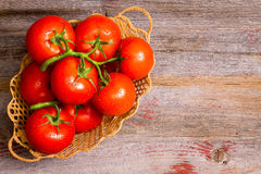 Basket of freshly ripened and cleaned tomatoes Stock Image