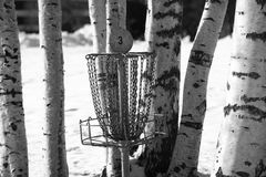 Basket for frisbeegolf in the park, winter Royalty Free Stock Images