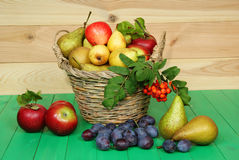 Basket of fruit stock photography