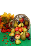 Basket of fruit. Full basket of fruit the decorated leaf Stock Photos