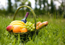 Basket with fruit. And bread on a grass Royalty Free Stock Photography