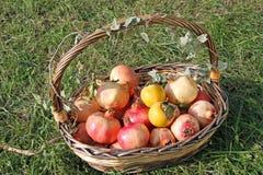 Basket with fruit of autumn inside Stock Photo