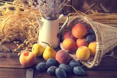 Basket of fruit. A tasty basket of fruit Stock Photography