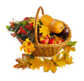Basket with fruit and vegetables, shot from top, i Royalty Free Stock Photos