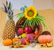 Basket of fruits Stock Photos