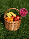 Basket of fruits Stock Photo