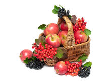 Basket with fruits and berries isolated on a white background Royalty Free Stock Image