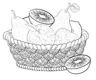 Basket with fruits, contours Stock Image