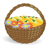 Basket with fruits and flowers in a forest glade. In the background Stock Photos