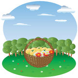 Basket with fruits and flowers in a forest glade, in the background forest and sky. With clouds Stock Photography