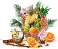 Basket with fruits and spices Stock Images