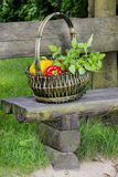 Basket of fruits and vegetables on wooden bench royalty free stock images