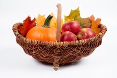 Basket full of apples and a pumpkin. With some maple leaves on a white background royalty free stock image