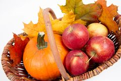 Basket full of apples and a pumpkin. With some maple leaves on a white background stock photos
