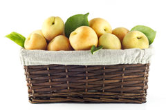 Basket full of apricots Royalty Free Stock Photo