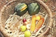 Basket full of autumn crop Royalty Free Stock Photos
