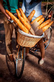 Basket full of baguettes on the bicycle in the park alley Stock Photography