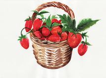 Basket full of berries Royalty Free Stock Image
