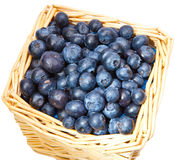 The basket full of a blueberry Royalty Free Stock Photography