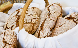 Basket full with Bread. White Basket full with fresh brown Bread Stock Photo