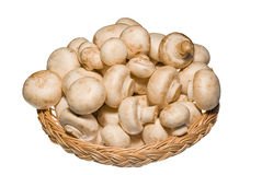 Basket full of champignons isolated on white Royalty Free Stock Image