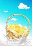Basket full of cheese floating in milk splash - vector Stock Photos