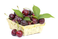 Basket full of cherries Royalty Free Stock Image