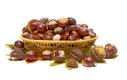 Basket full of chestnuts and autumnal leaves Stock Image