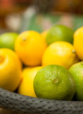 Basket full with Citrus Fruits. Closeup of Basket full with Citrus Fruits Stock Image