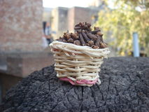 Basket full of cloves. Hot spice cloves in bamboo basket, one of famous indian food ingredient stock image