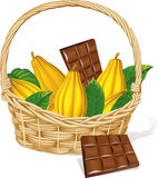 Basket full of cocoa pod and chocolate isolated Stock Photo