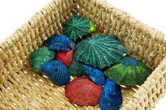 Basket full of color Royalty Free Stock Images
