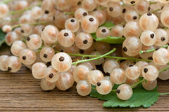 Basket full of currants Royalty Free Stock Photography