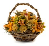A basket full of dried flowers. Arrangement of dried flowers in a basket Stock Image