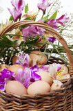 Basket full of Easter eggs and flower Royalty Free Stock Image
