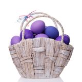 Basket full of eggs colored in shades of violet. Isolated on white background Stock Images