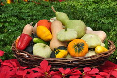 A basket full of farm products Stock Photo