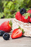 Basket full of fresh berries Royalty Free Stock Photography