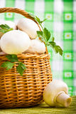Basket full of fresh champignon mushrooms Royalty Free Stock Photography