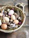 Basket full of fresh eggs Stock Photos