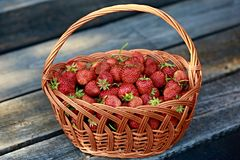 Basket full of fresh juicy red strawberries Stock Photos