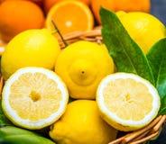 Basket full of fresh lemon Royalty Free Stock Images