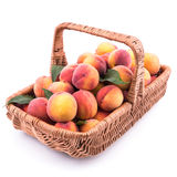 Basket full of fresh peaches isolated on white background. Stock Photo