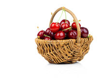 Basket full of fresh red cherry stock photography