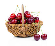 Basket full of fresh red cherry stock photos