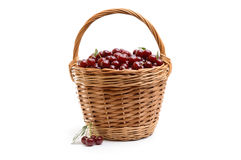 Basket full of fresh red cherry on a white background Stock Photography