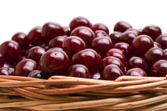 Basket full of fresh red cherry on a white background Stock Images