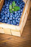 Basket full of fresh sweet blueberries Royalty Free Stock Image