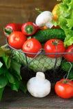 Basket full of fresh vegetables Royalty Free Stock Image