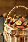 Basket full of fresh yellow boletus mushrooms Stock Photo